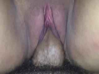 india, pussy